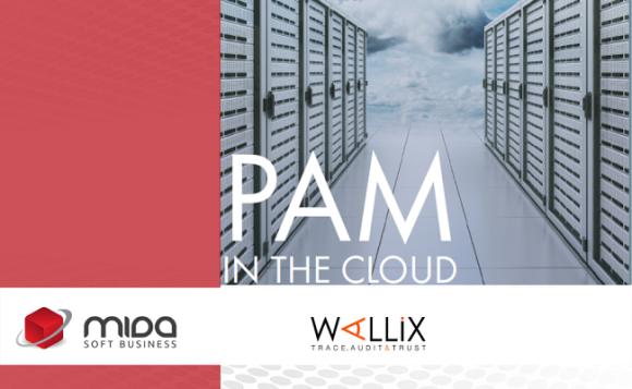 PAM și securizarea cloud-ului